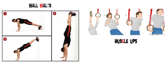 Wall Walks + Muscle Ups
